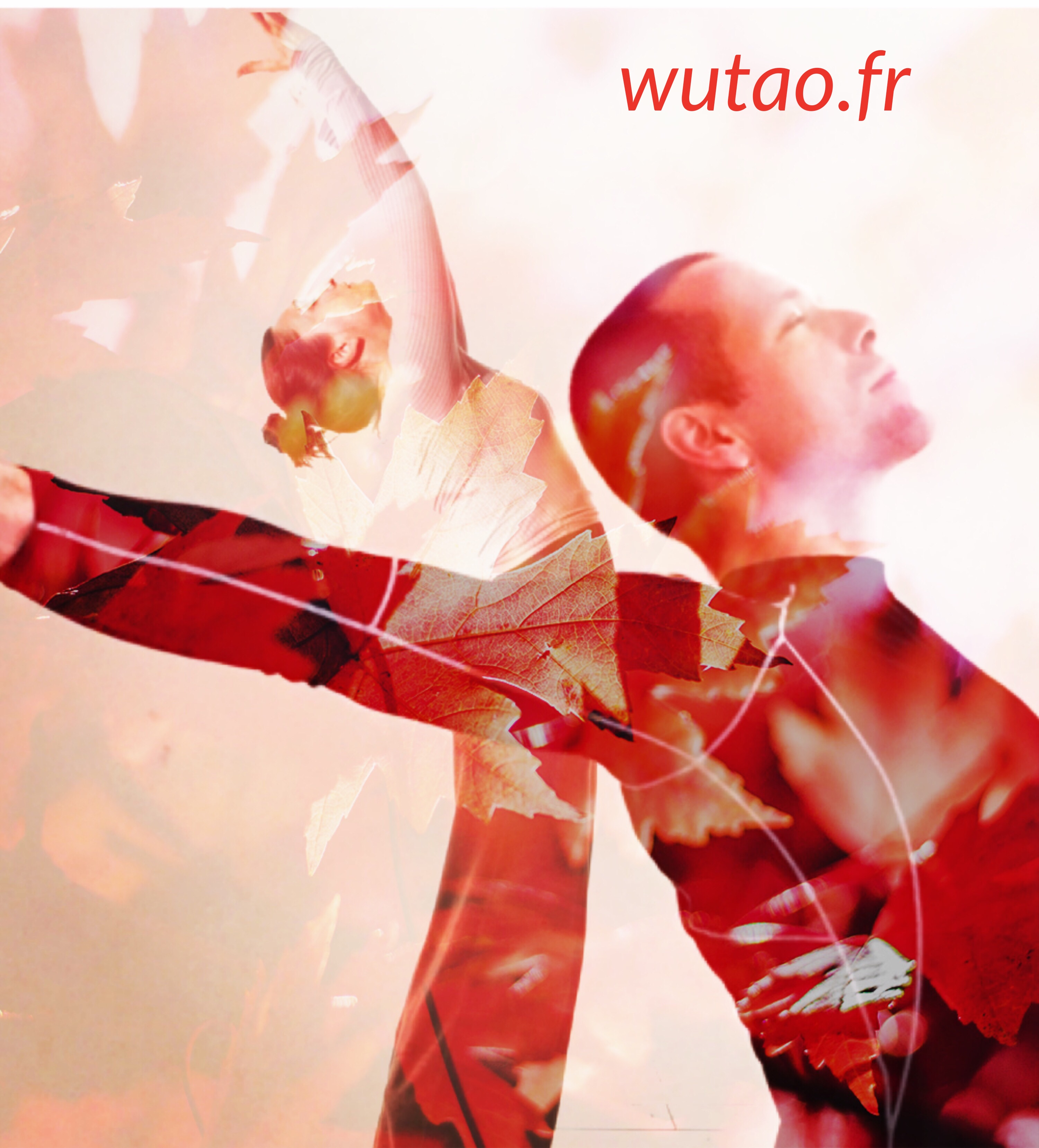 cecile bercegeay olivier milano stage wutao rennes mars 2018